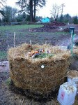 What to put in a compost pile.